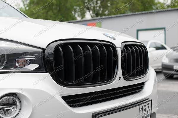 Решетка (ноздри) Performance BMW X 5 (F 15)